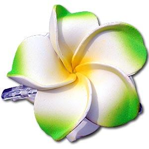 SEESTERN Bali Hawaii Haarklammer 2 Frangipani Blüten aus Moosgummi Haarspange R