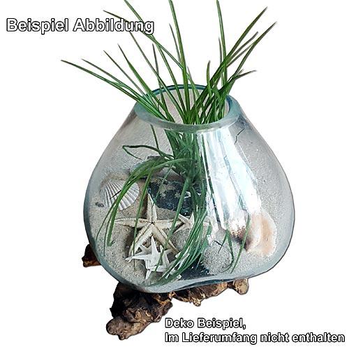 teak wurzelholz mit aufgegossener glasschale glasvase deko teakholz h. Black Bedroom Furniture Sets. Home Design Ideas